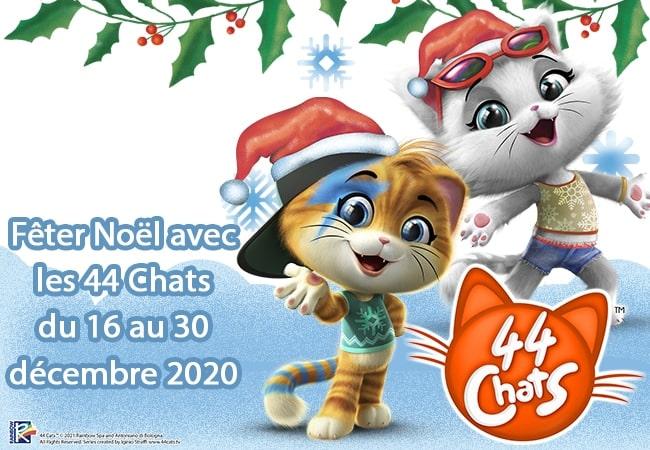 44 chats concours mafamillezen